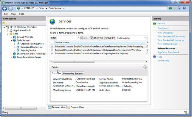 iis error 503 application pool stops